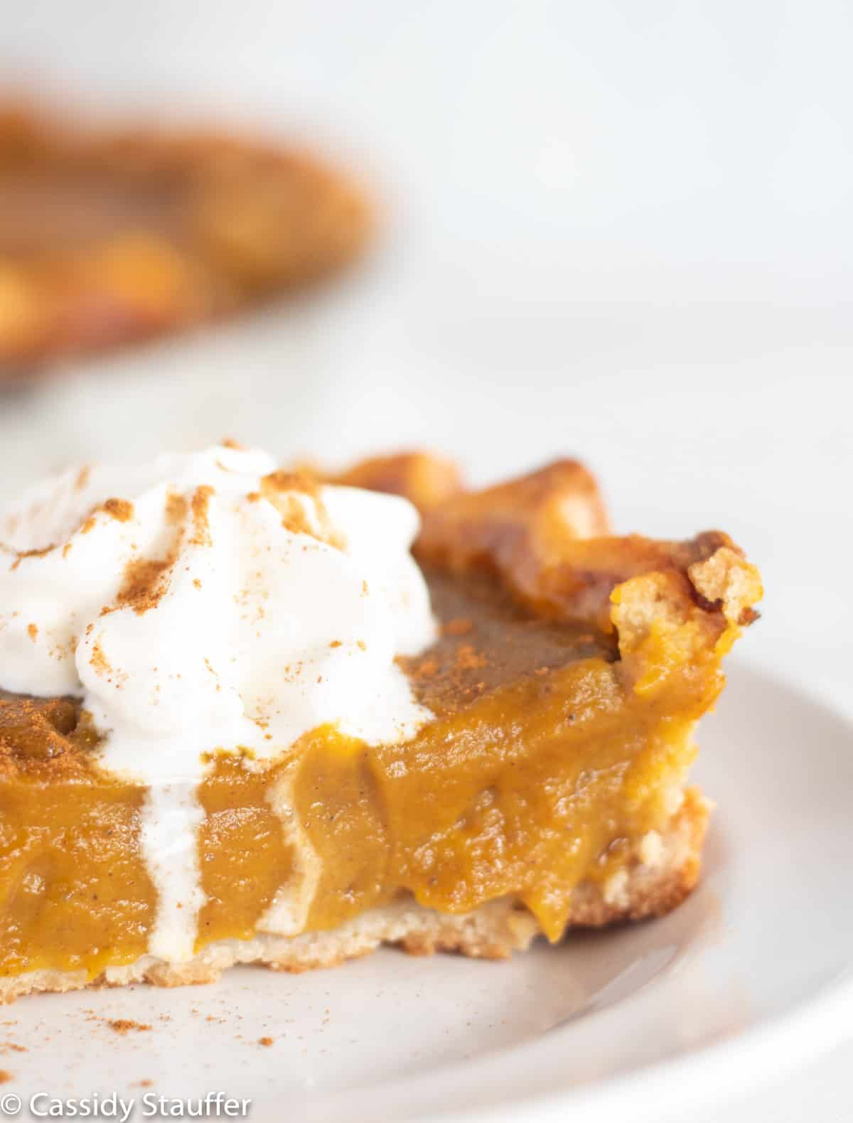close up of pumpkin pie with melting whipped cream