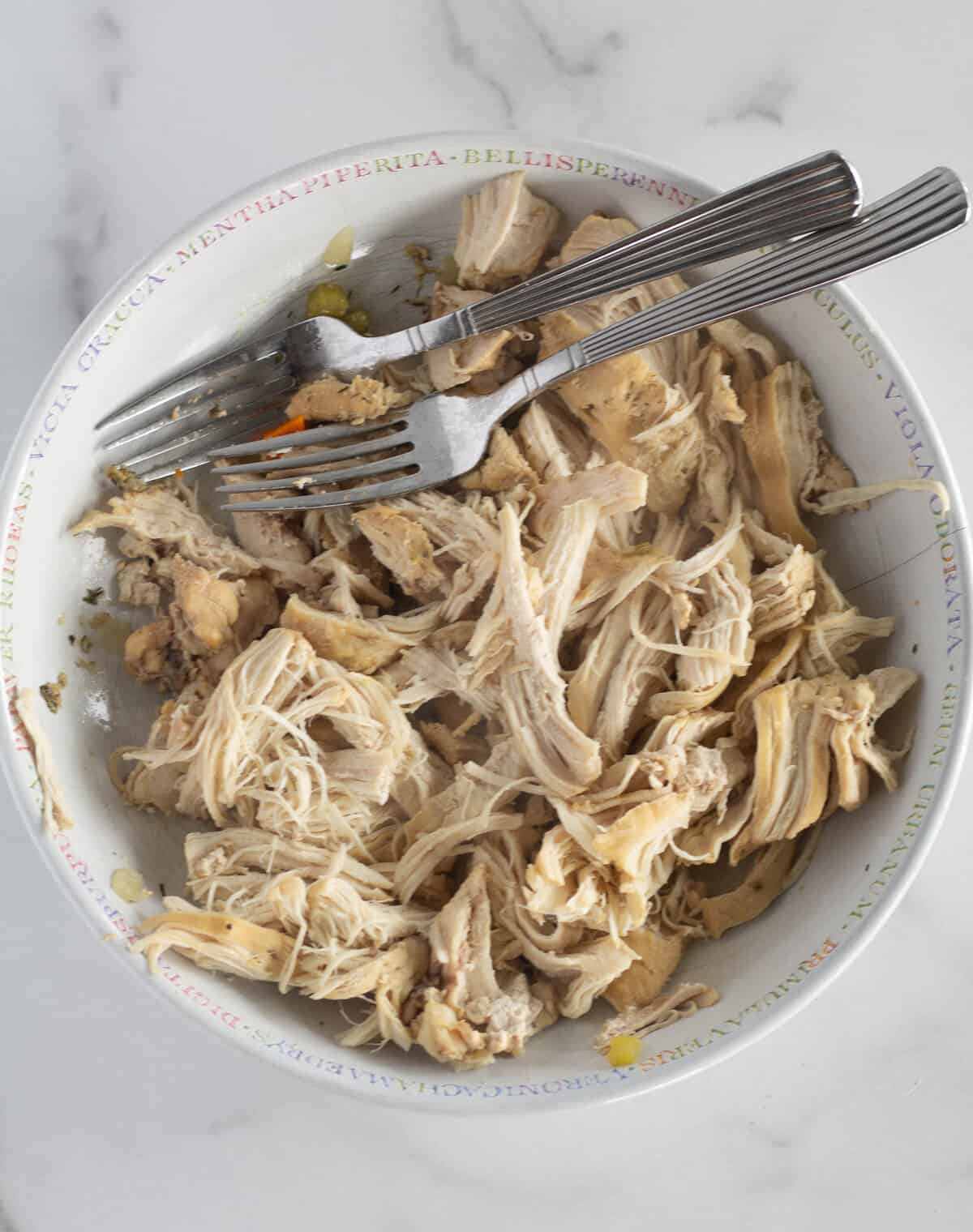 shredded chicken in bowl