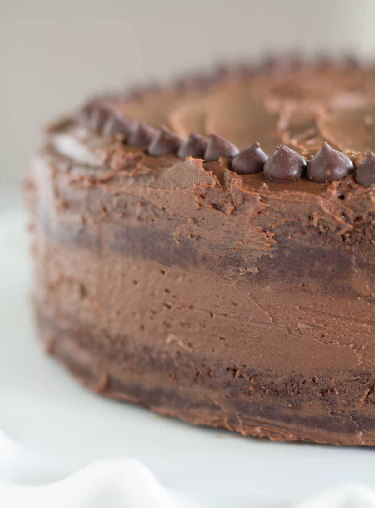 close up of chocolate frosted cake with chocolate chips
