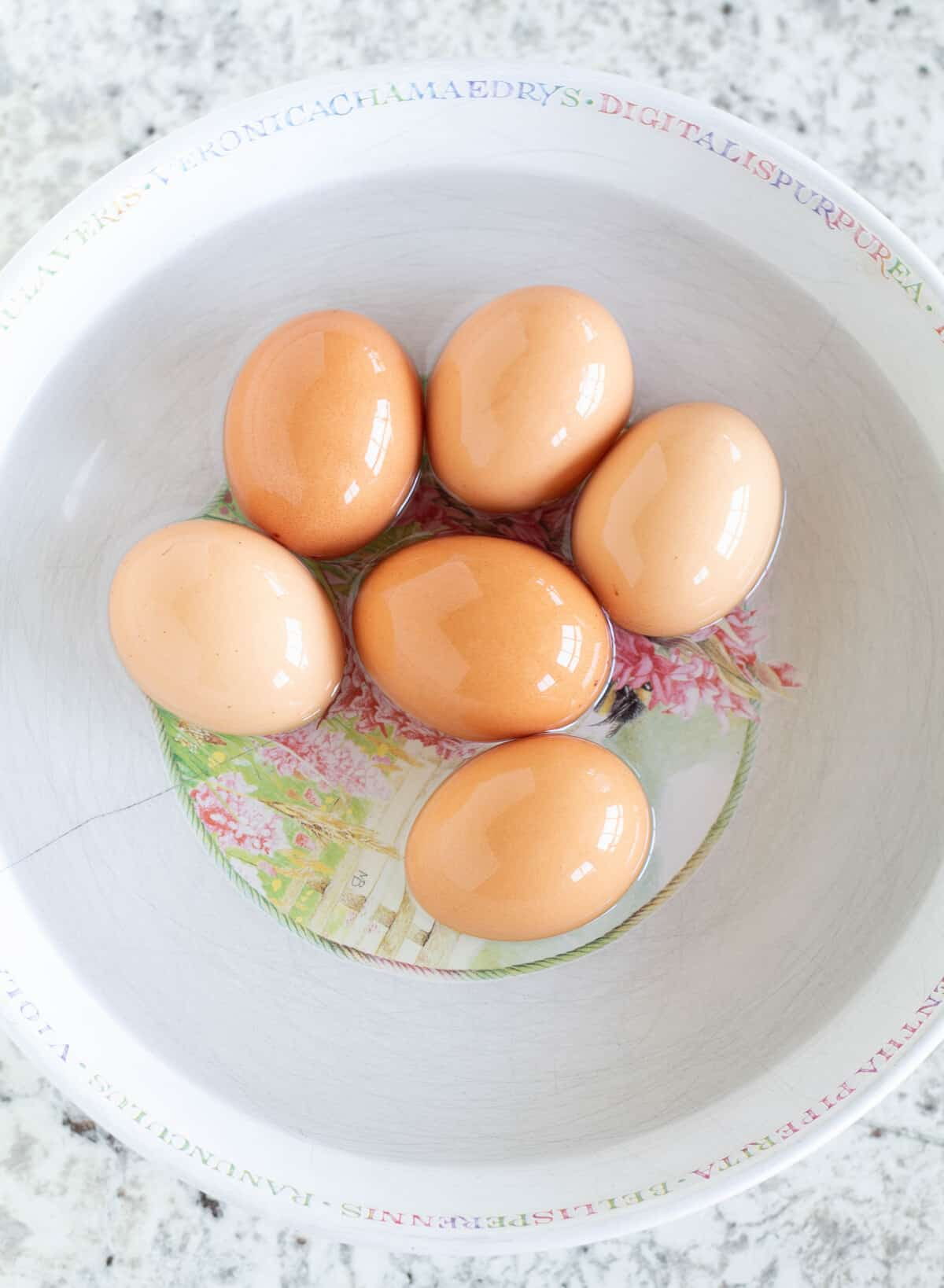 eggs in a bowl of warm water